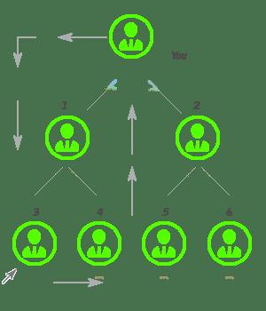Board MLM Plan